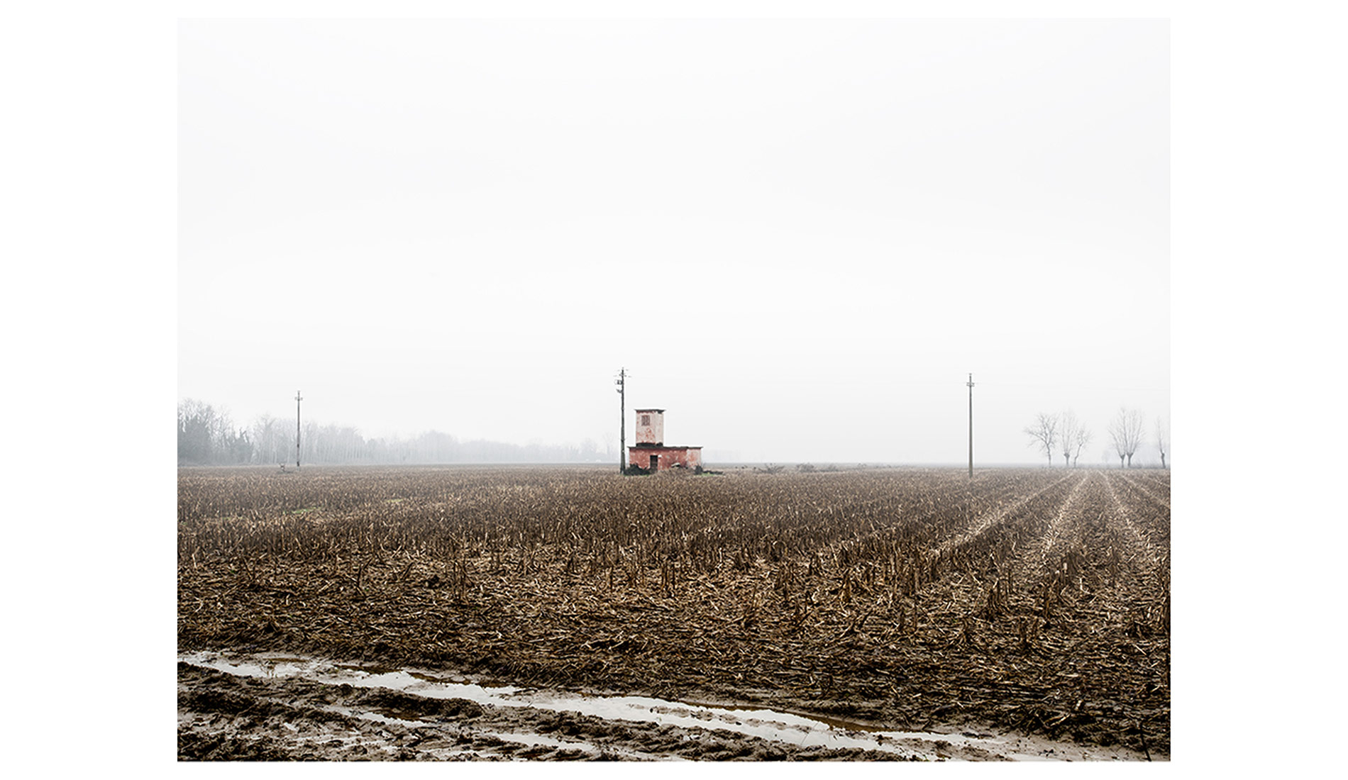©MTacchini_Foggy-Homeland_02