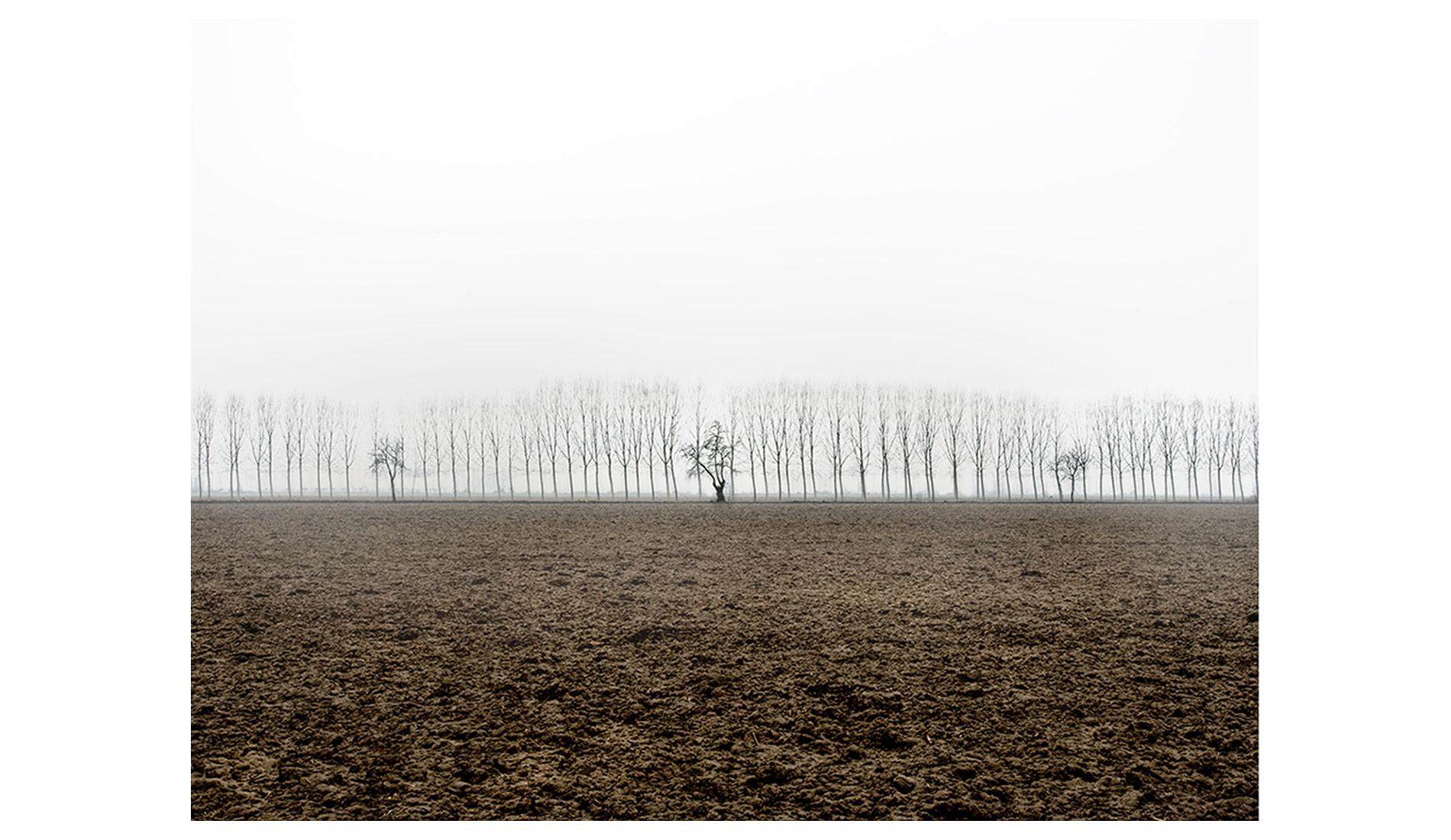 ©MTacchini_Foggy-Homeland_03