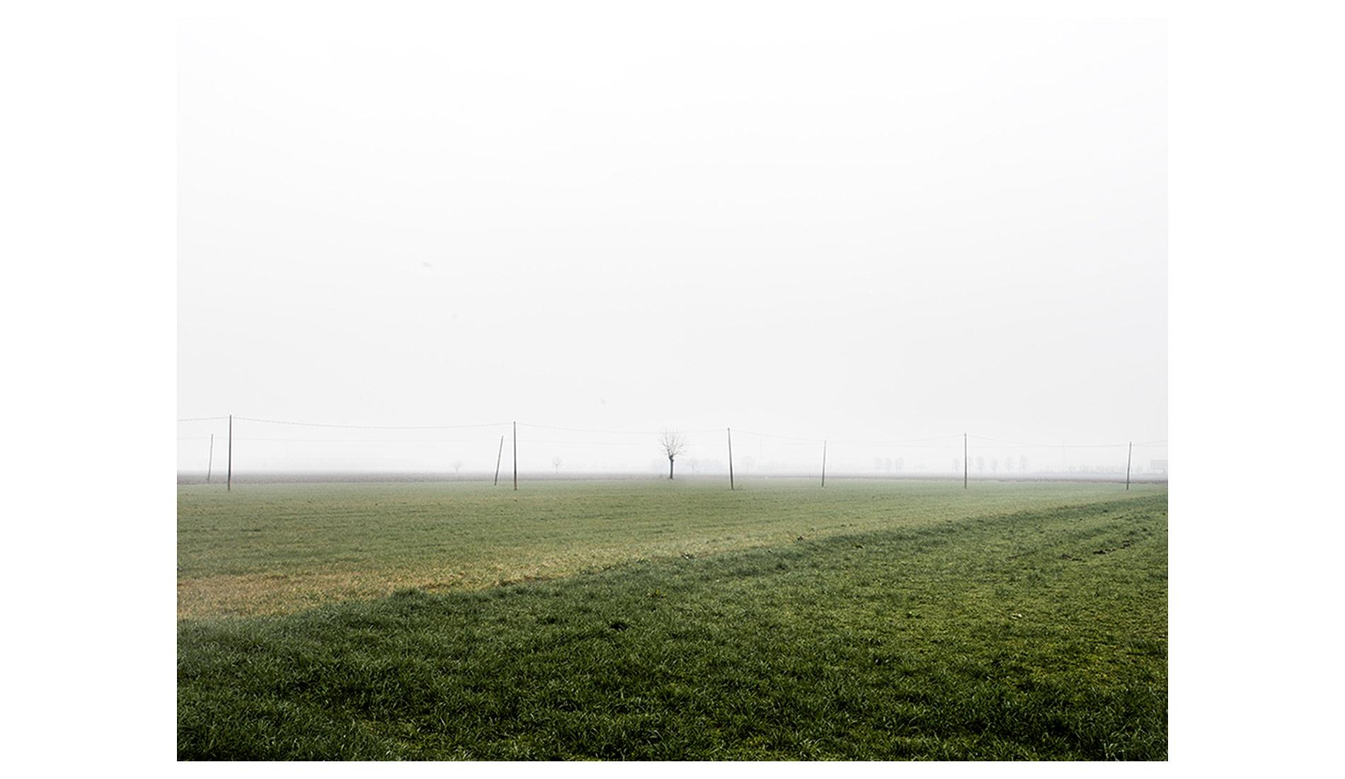 ©MTacchini_Foggy-Homeland_04