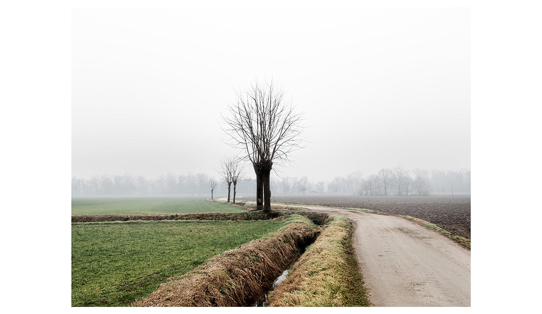 ©MTacchini_Foggy-Homeland_07