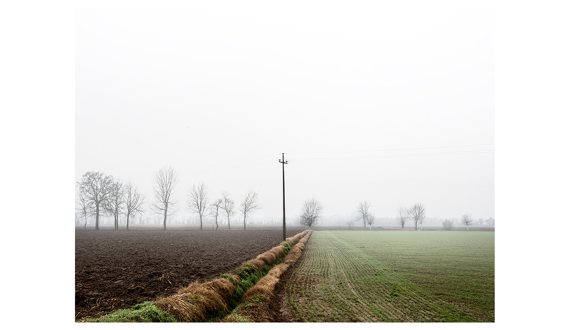 ©MTacchini_Foggy-Homeland_09
