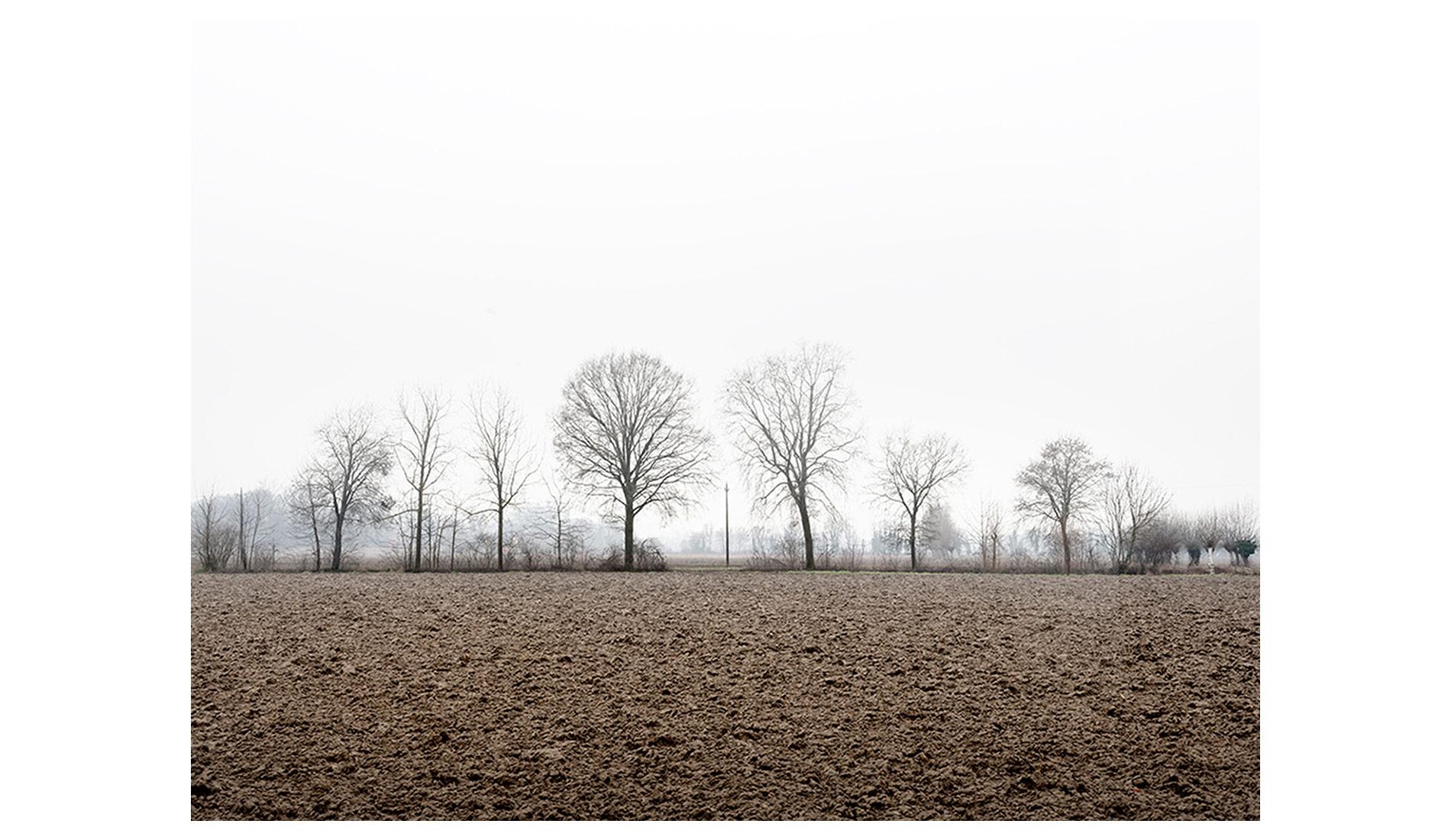 ©MTacchini_Foggy-Homeland_10