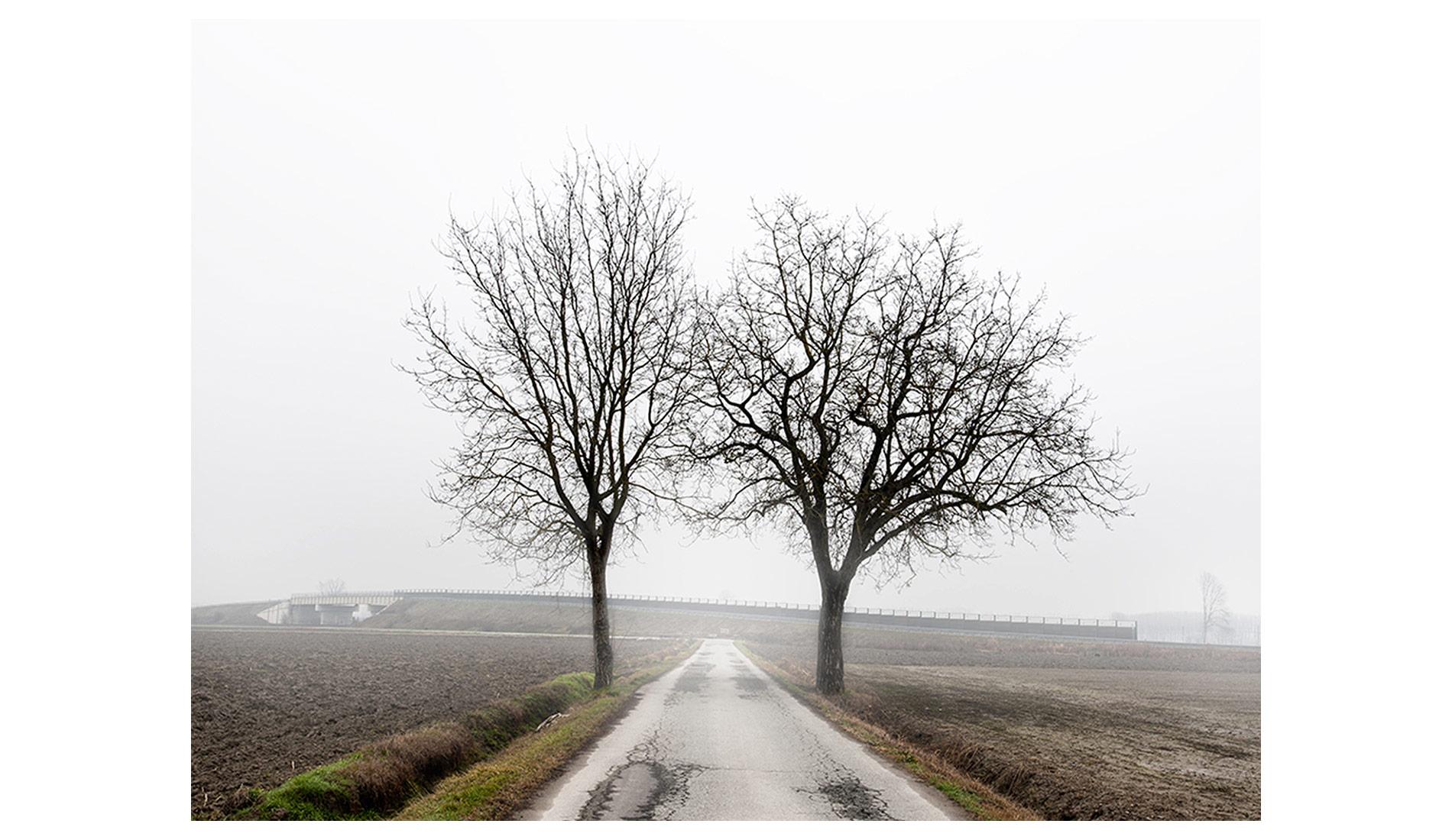 ©MTacchini_Foggy-Homeland_12
