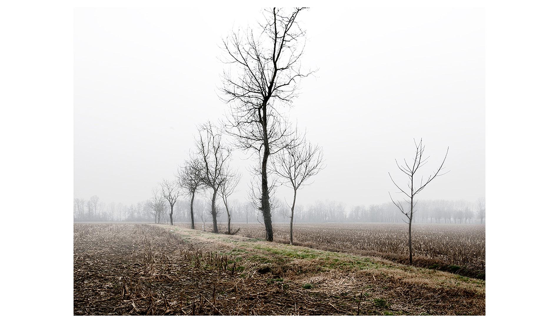 ©MTacchini_Foggy-Homeland_13