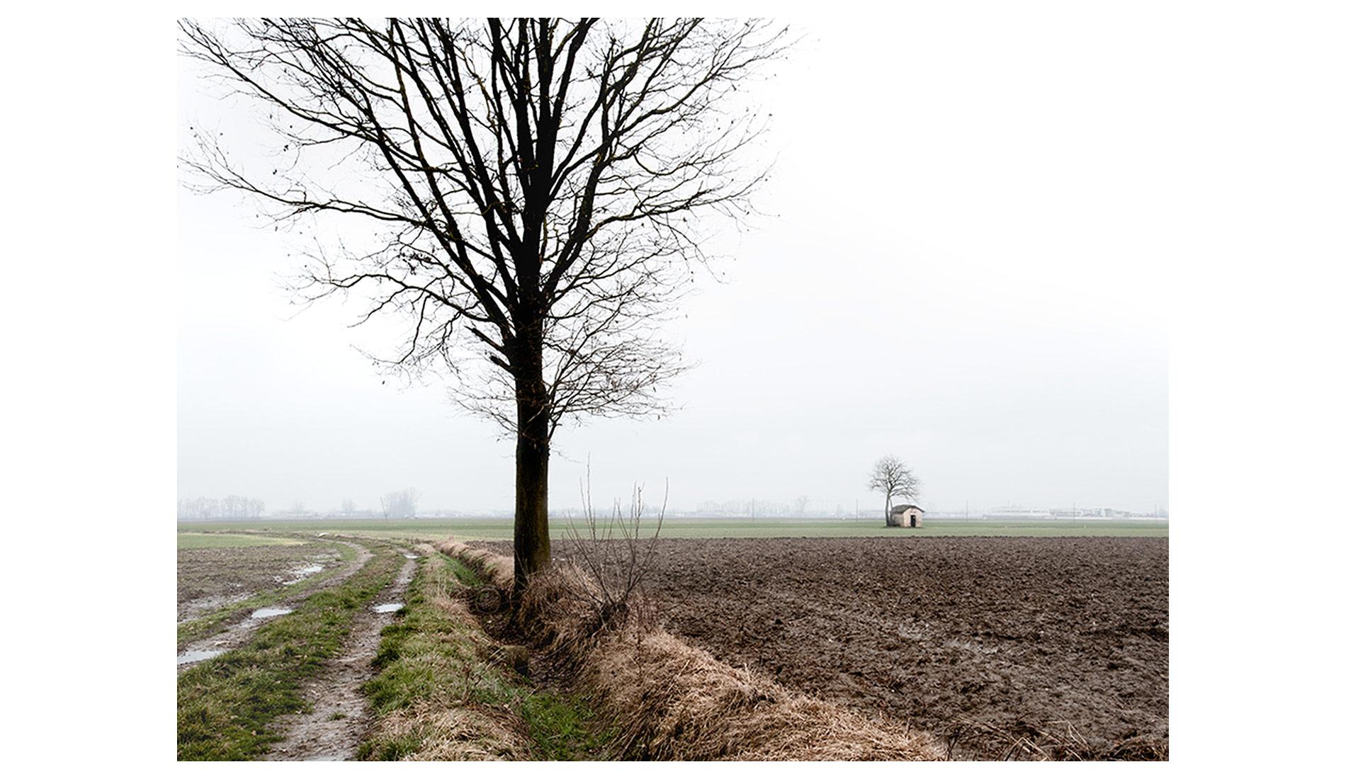 ©MTacchini_Foggy-Homeland_14