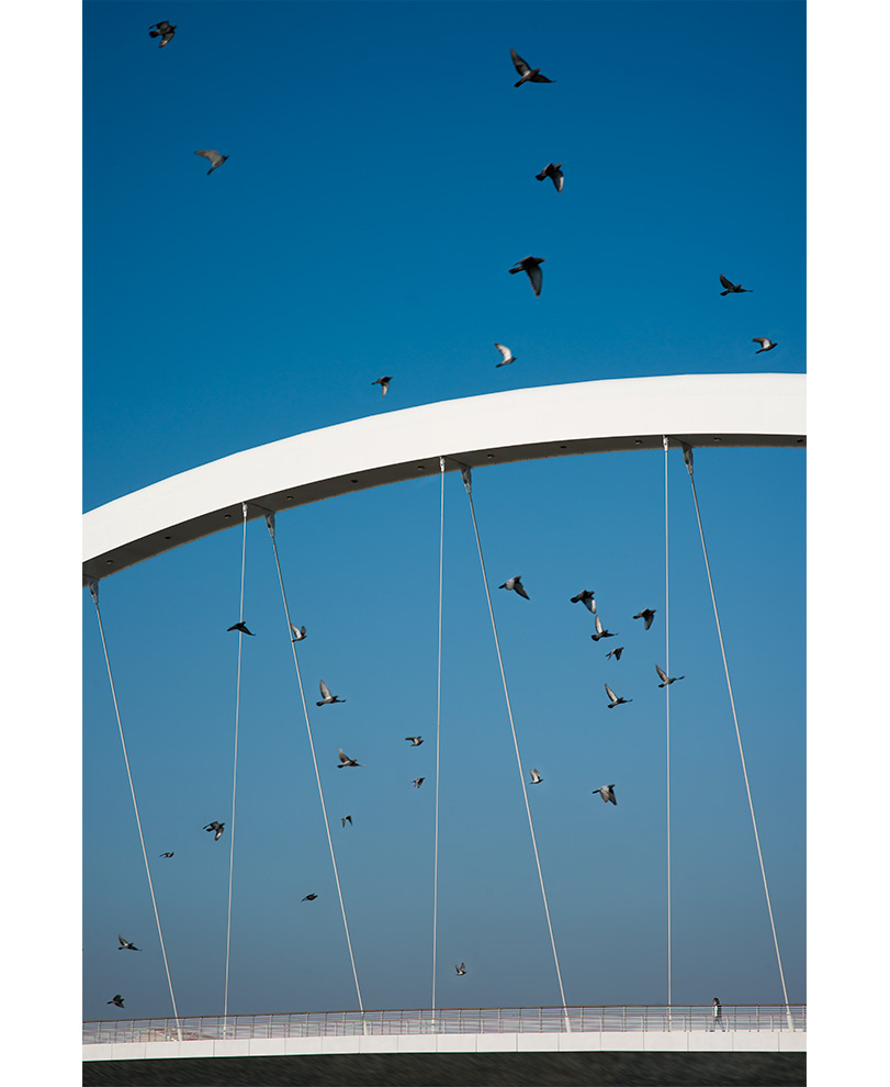 ©marco-tacchini-fotografo-ponte-cittadella-richar-meier-and-partners_09